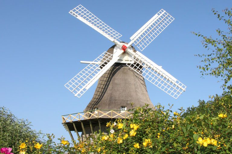 Schiffscharter Dänemark- Windmühle